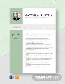 Business Intelligence Project Manager Resume Template