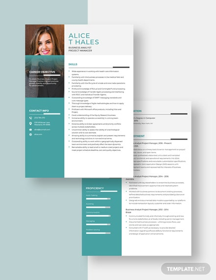 Business Analyst Project Manager Resume Download