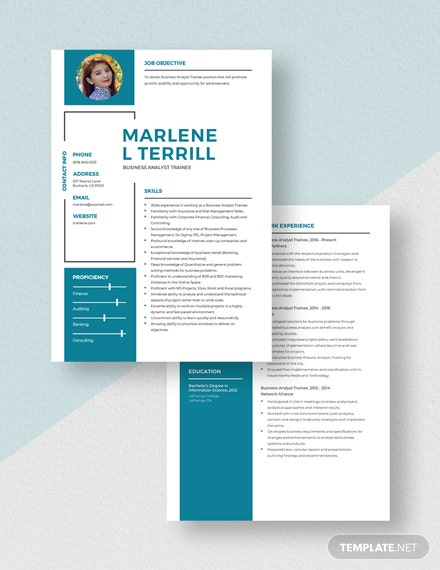 Business Analyst Trainee Resume Download
