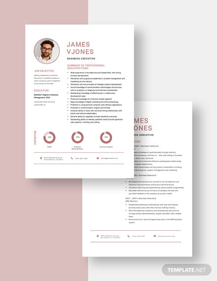Business Executive Resume Download