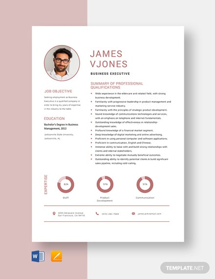 Business Executive Resume
