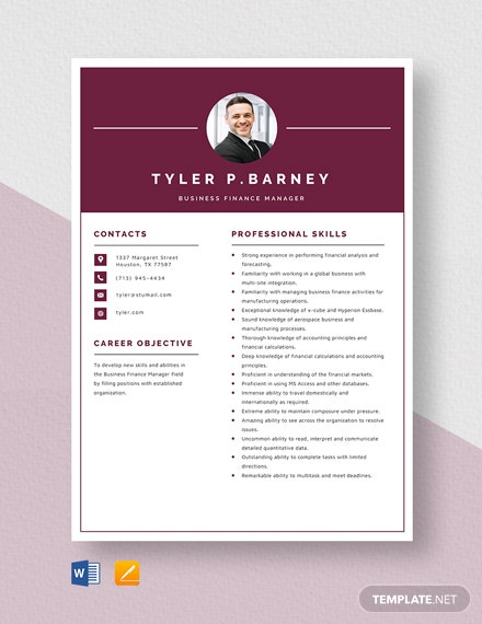 Business Finance Manager Resume Template