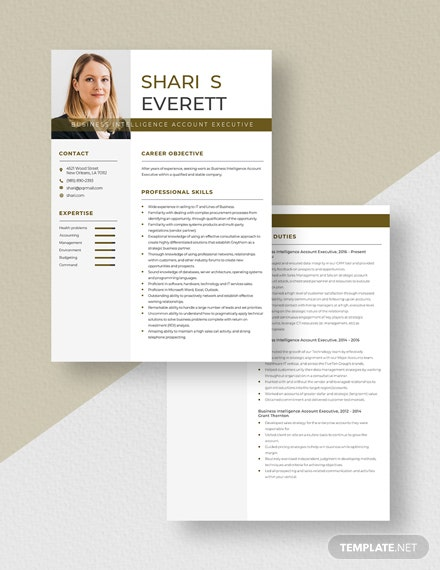 Business Intelligence Account Executive Resume Download