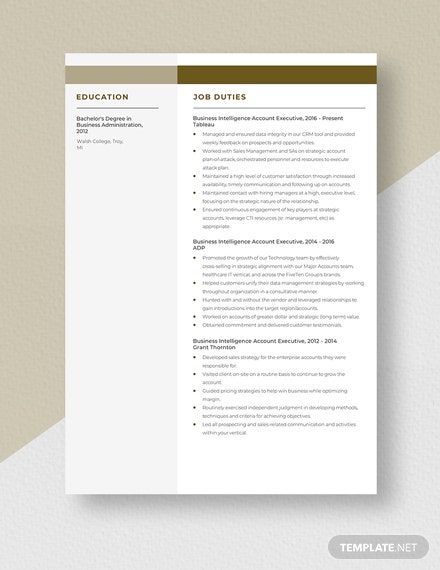 Business Intelligence Account Executive Resume Template
