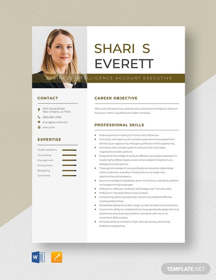 Business Intelligence Account Executive Resume