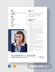Business Intelligence Consultant Resume Template