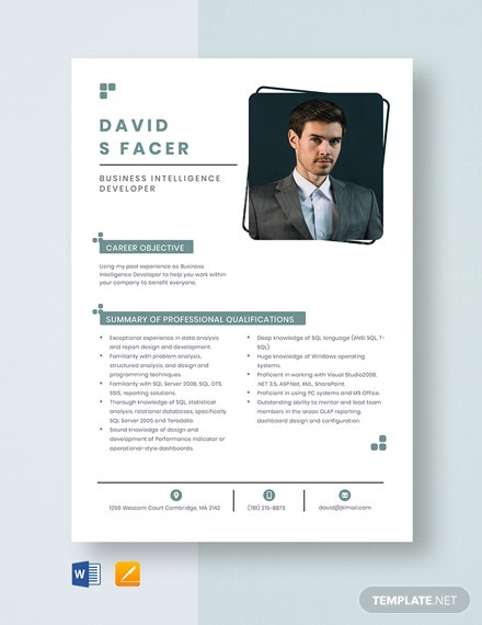 Business Intelligence Developer Resume Template