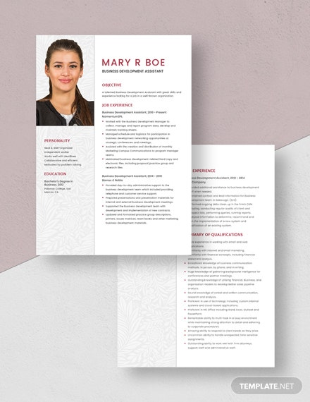 Business Development Assistant Resume Download
