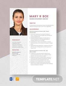Business Development Assistant Resume Template
