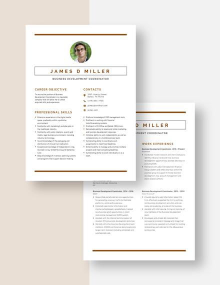 Business Development Coordinator Resume Download
