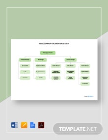 Free Sample Trade Company Organizational Chart Template