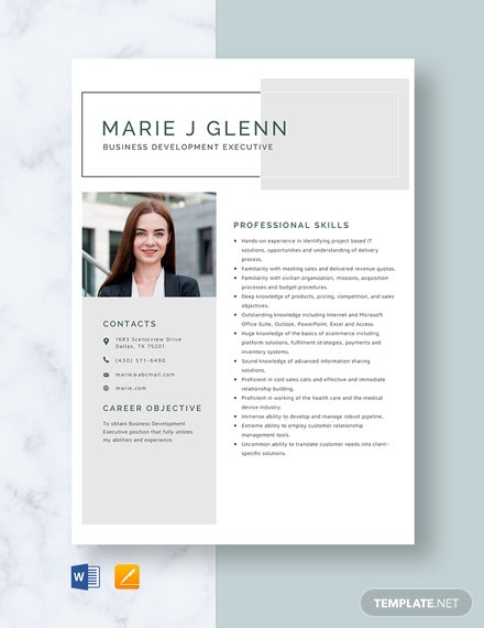 Business Development Executive Resume Template