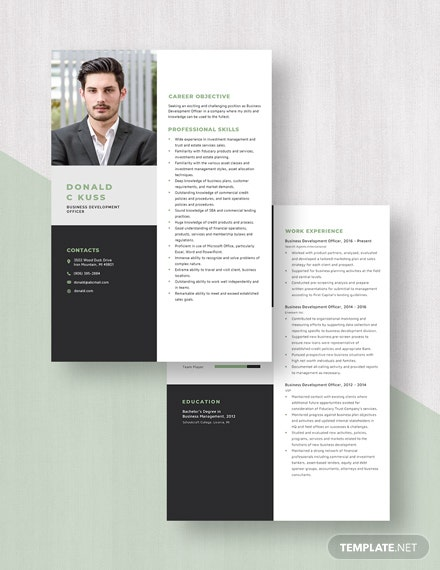 Business Development Officer Resume Download