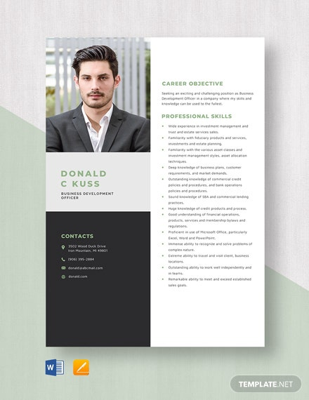 Business Development Officer Resume Template