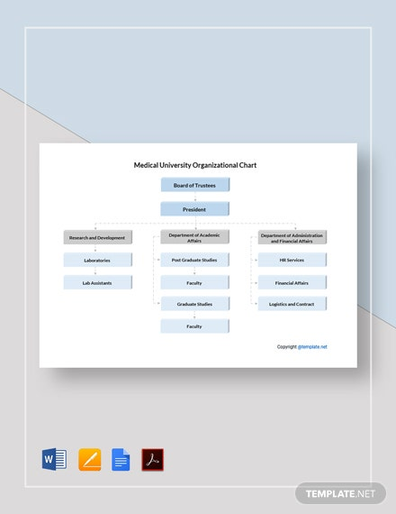Free Medical University Organizational Chart Template