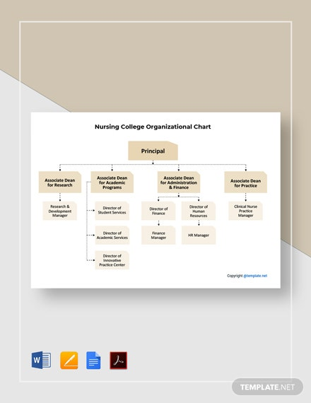 Free Nursing College Organizational Chart Template