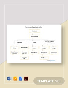 Free Tournament Organizational Chart Template