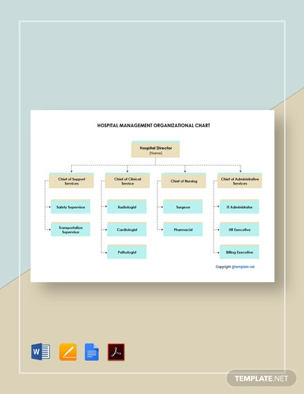 Free Hospital Management Organizational Chart Template