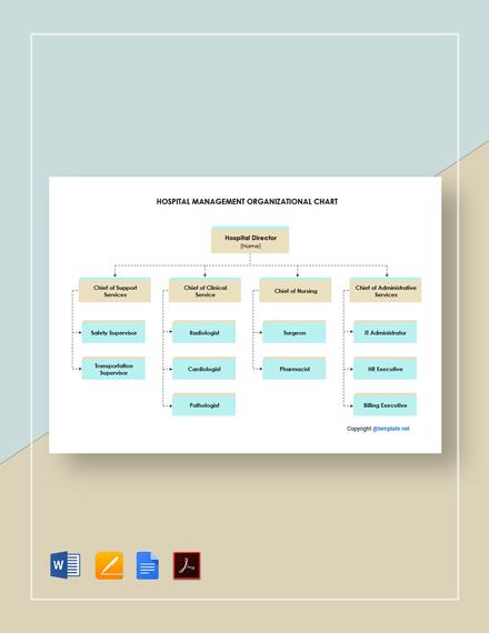 Free Hospital Management Organizational Chart Template