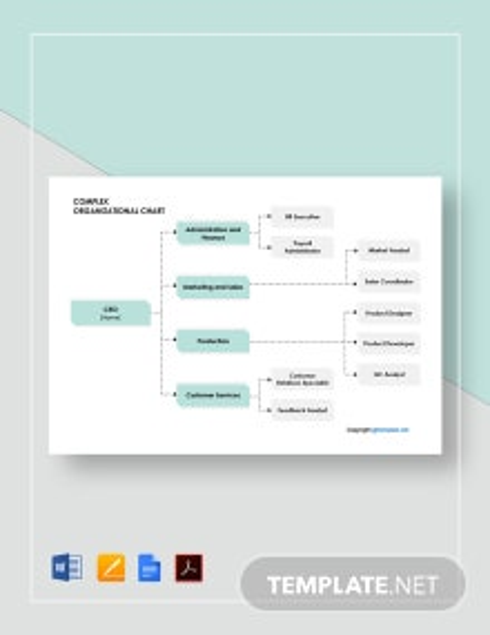 Free Sample Complex Organizational Chart Template