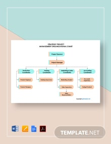 Free Strategic Project Management Organizational Chart Template
