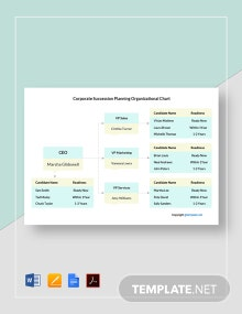 Corporate Succession Planning Organizational Chart Template