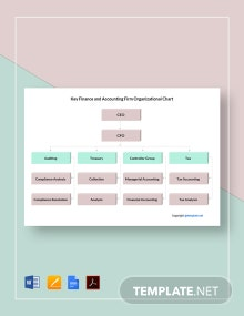 Free Key Finance and Accounting Firm Organizational Chart Template