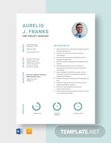 PMO Project Manager Resume Template