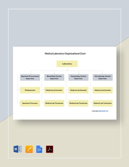 Free Medical Laboratory Organizational Chart Template