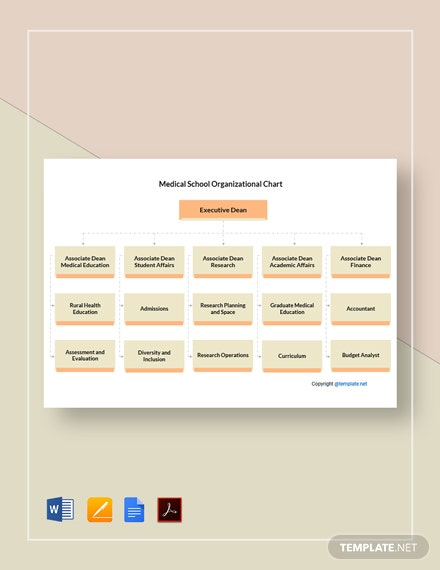 Free Medical School Organizational Chart Template