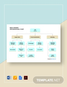 Free Sample Small Business Organizational Chart Template
