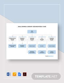 Small Business Company Organizational Chart Template