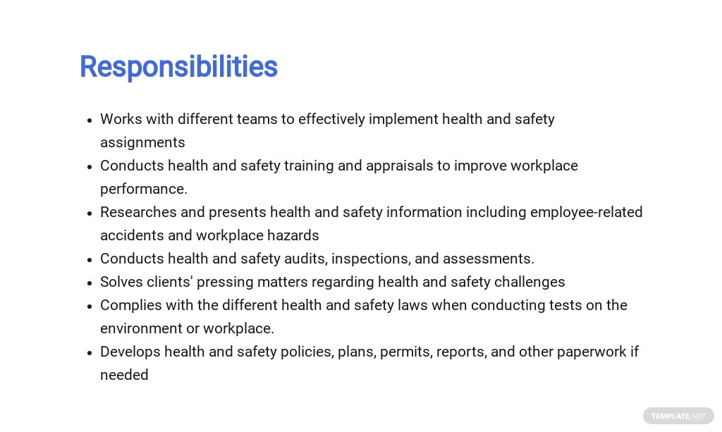 Free Health And Safety Consultant Job Description Template 3.jpe