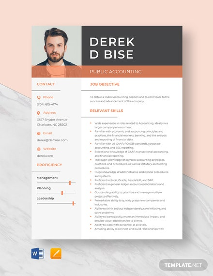 Public Accounting Resume Template