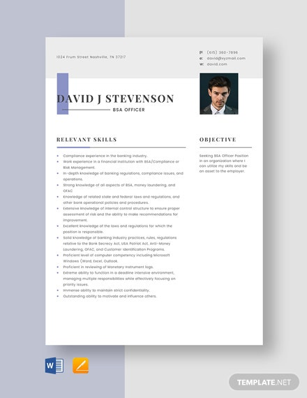 BSA Officer Resume Template