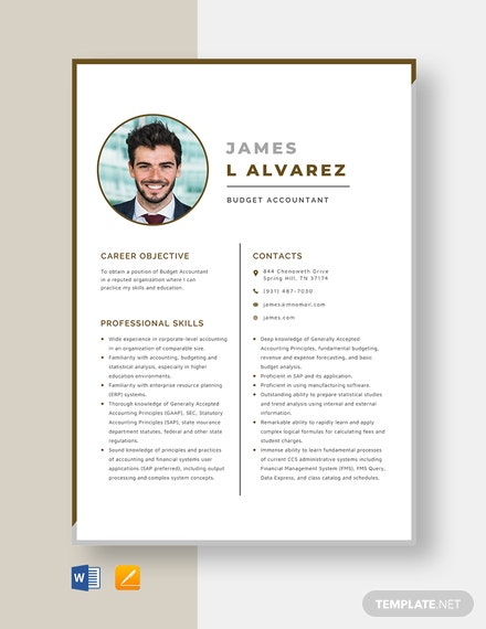 Budget Accountant Resume Template