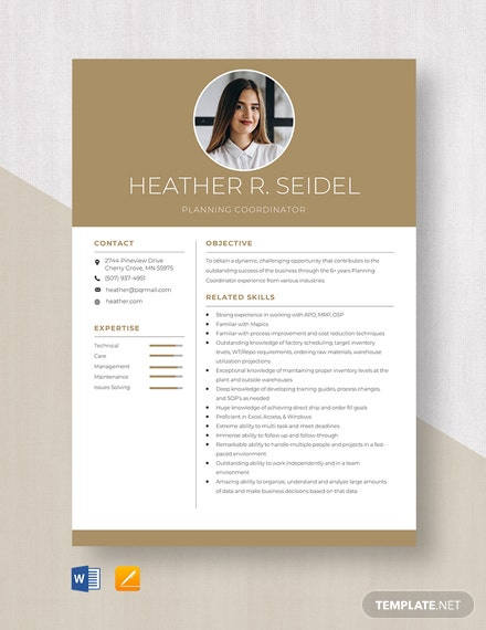 Planning Coordinator Resume Template