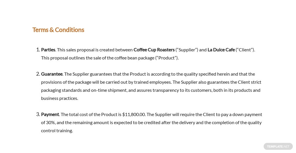 Sales Proposal Template 9.jpe