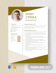 RN Legal Consultant Resume Template