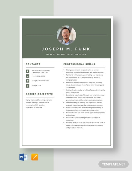 Marketing and Sales Director Resume Template