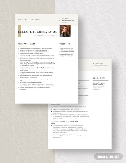 Management and HR Consultant Resume Download