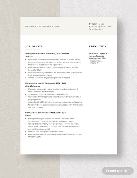 Management and HR Consultant Resume Template