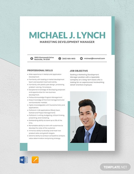 Marketing Development Manager Resume Template