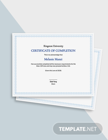 Free Sample Completion Certificate Template