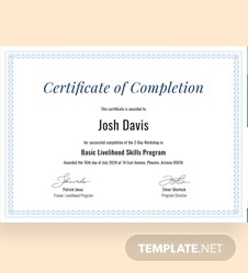 Sample Completion Certificate Template