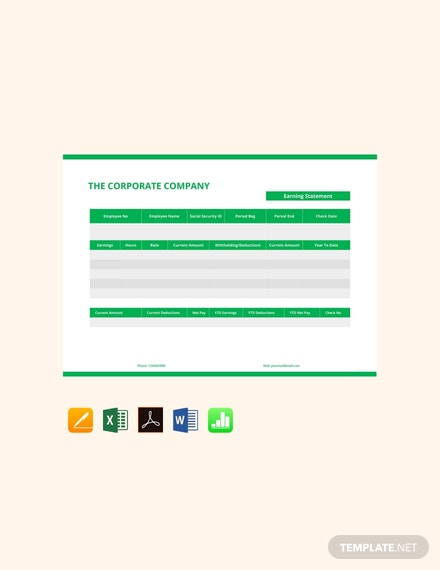 Earning Statement Pay Stub Template