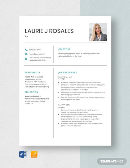 pa resume template  word  pages  template