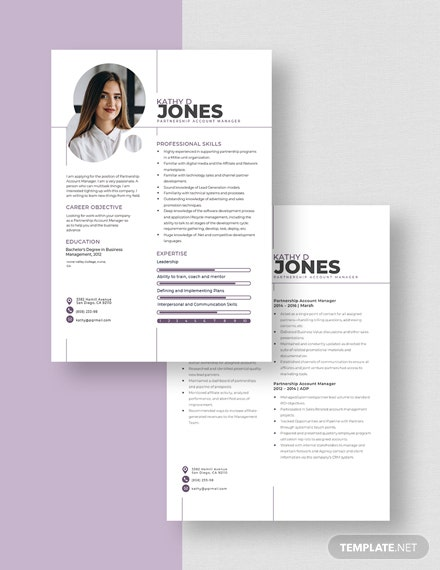 Partnership Account Manager Resume Download