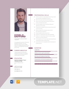 Partnership Development Manager Resume Template