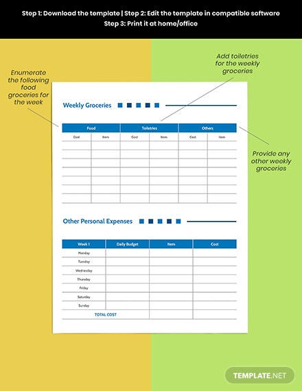 Weekly  Budget Planner template Example